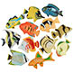 TROPICAL FISH ASSORTMENT 2-1/4""